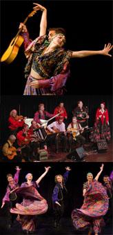 Цыганское танцевальное и музыкальное шоу